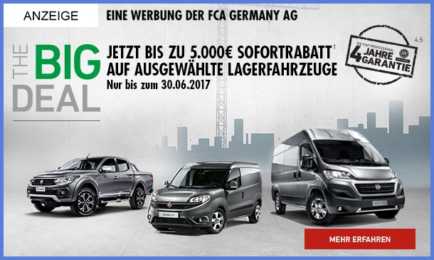 big-dal-fiat-professional-Angebot